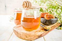 与花粉和蜂蜜梳子的蜂蜜 库存图片
