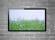 与花草甸的LCD电视在垂悬在砖墙上的屏幕上 免版税库存图片