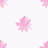 与花莲花的无缝的样式 库存照片