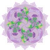 与花蓟的凯尔特标志装饰品和凯尔特结 免版税库存图片