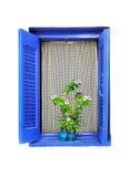 与花边窗帘和一个花盆的木窗口在白色墙壁上 库存照片