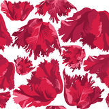 与花郁金香的无缝的纹理 免版税库存图片