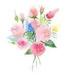 与芽、野花和gr的美丽的淡色柔和的精美嫩逗人喜爱的典雅的可爱的花卉五颜六色的春天夏天桃红色玫瑰 向量例证