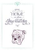 与英国牛头犬剪影画象的手字法  免版税图库摄影