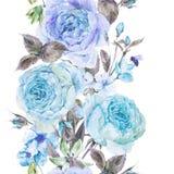 与英国玫瑰的水彩春天无缝的边界 库存图片