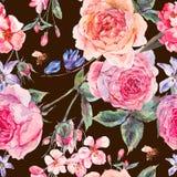 与英国玫瑰的水彩春天无缝的边界 库存照片