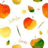 与苹果和叶子的图象的样式,充满黄色,橙色,绿色和红颜色水彩纹理  9月ins 图库摄影