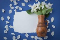与苹果开花分支的贺卡在一个水罐的在蓝色 库存照片
