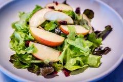 与苹果计算机、核桃和蔓越桔的蔬菜沙拉 库存图片