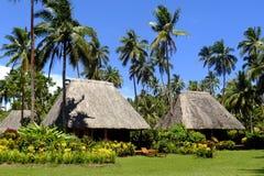 与茅屋顶,瓦努阿岛海岛,斐济的传统bure 免版税图库摄影