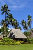 与茅屋顶,瓦努阿岛海岛,斐济的传统bure 免版税库存照片