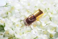 与茉莉花的阿拉伯oudh玫瑰油香水或agarwood油芬芳在微型瓶 免版税库存图片