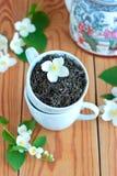 与茉莉花的绿色茶叶 库存照片