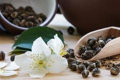 与茉莉花的绿茶在夏天背景 库存图片