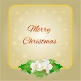 与茉莉花花和霍莉传染媒介的愉快的圣诞节框架 向量例证