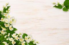 与茉莉花花的壁角安排在木头 免版税库存照片