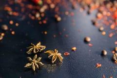 与茴香豆蔻果实星的黑暗的创造性的布局 库存图片