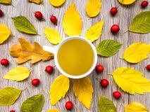 与茶杯的明亮的秋天构成,装饰用在木背景的叶子 顶视图,平的位置,看法从上面 免版税图库摄影