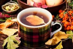 与茶杯的秋天静物画 图库摄影