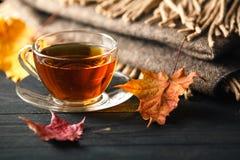 与茶的秋天静物画、格子花呢披肩和叶子在木ba 库存图片
