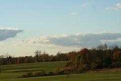 与草和树的详尽的风景 图库摄影