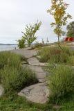 与草和灌木的小花岗岩小山沿河 免版税库存照片
