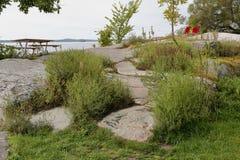 与草和灌木的小花岗岩小山沿河 库存图片