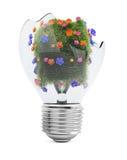 与草和花的残破的电灯泡 免版税库存图片