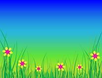 与草和花的蓝天背景 免版税库存图片