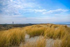 与草和蓝天的沙丘 免版税图库摄影