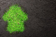 与草土壤和房子的Eco背景  免版税库存图片