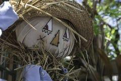 与草帽和蓝色衬衣的愉快的稻草人 免版税库存照片
