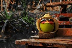 与草帽的椰子和明亮的太阳镜在黑暗的口气的长凳站立 免版税库存图片