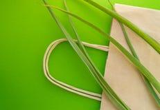 与草本植物的纸购物带来eco顶视图平的位置在绿色背景、零的废生态概念和世界 免版税库存照片