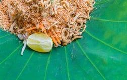 与草本菜的泰国南部的米沙拉在有选择聚焦的莲花叶子 库存照片