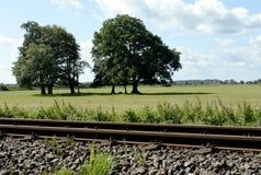 与草甸、树和蓝天的铁路轨道 免版税库存照片