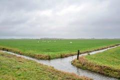 与草甸和垄沟的风景与惨淡的天气 免版税库存照片