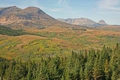 与草甸和山的横向 图库摄影