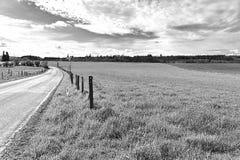 与草甸和牧场地的风景 免版税库存图片