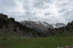 与草甸岩石和杉树的山风景 库存图片