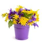 与草甸的小花束在桶开花。 免版税库存照片