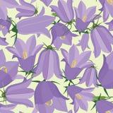 与草甸花的无缝的纹理 免版税库存照片