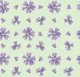 与草甸花的无缝的纹理 库存图片