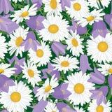 与草甸花的无缝的背景 免版税图库摄影