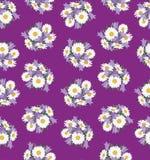 与草甸花的无缝的背景 免版税库存照片