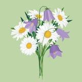与草甸花的花束 免版税库存图片