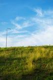 与草的天空 库存照片