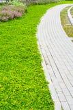 与草的庭院石路径 免版税库存照片