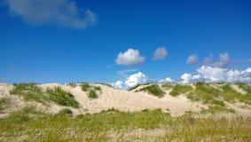 与草的明亮的晴朗的沙丘在晴天 免版税库存照片