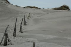 与草的沙丘在北海的海岸在西兰省在荷兰 免版税库存图片